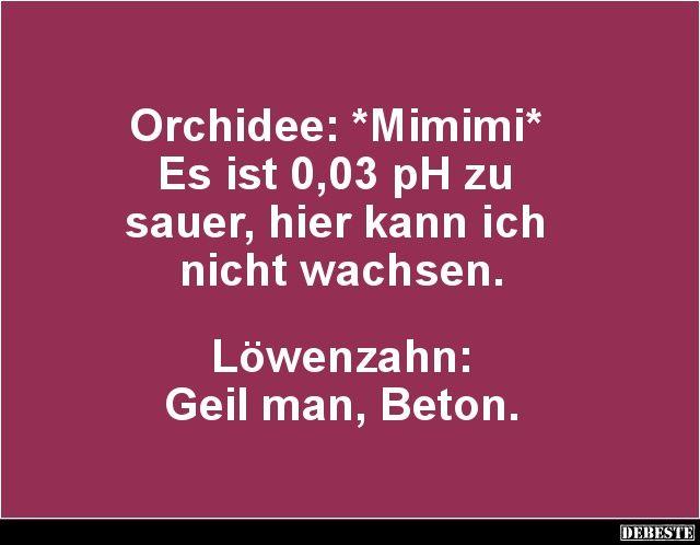 Orchidee: *Mimimi* Es ist 0,03 pH zu sauer.. | Lustige Bilder, Sprüche, Witze, echt lustig