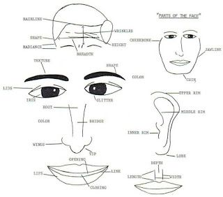 FACE READING: How To Read Faces - The Ultimate Advantage ...
