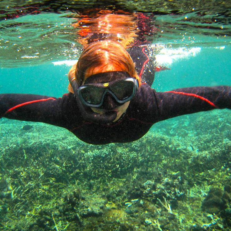 Mangrove, snorkeling package NusaPenida Manta Point $75