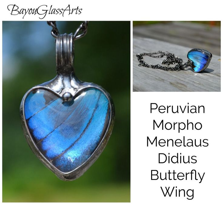 Real butterfly wing in glass necklace. See this piece as well as others by following the link. :)