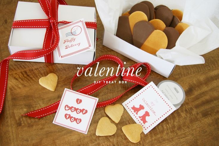 Recipe Valentine S Day Gourmet Dog Treats
