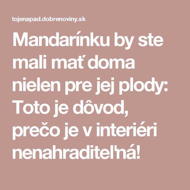 Mandarínku by ste mali mať doma nielen pre jej plody: Toto je dôvod, prečo je v interiéri nenahraditeľná!
