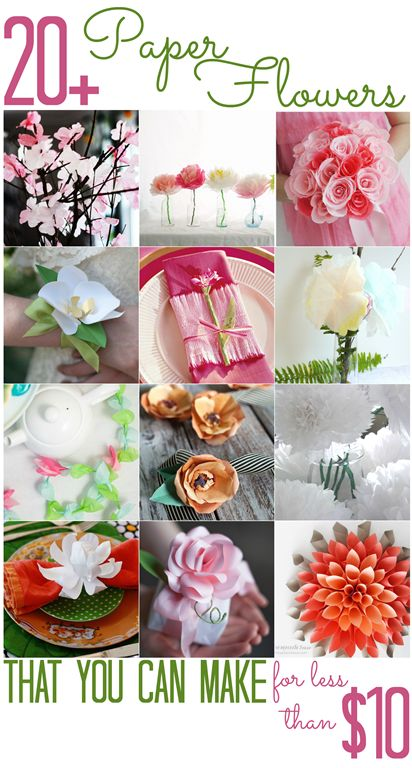 [20-Paper-Flowers-that-you-can-make-f%255B1%255D.png]