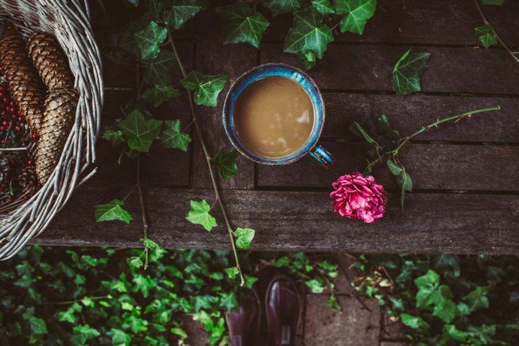Från trädgården – fredagsbuketten