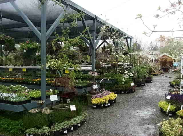 Plant center displays for retail like the end cap for Garden workshop designs