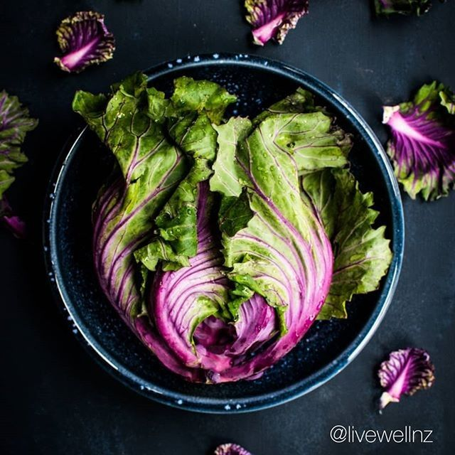 Should You Eat More Purple Vegetables The Deep Purple Color Of Fruits And Veggies Is Usually A Sign These Foods Have A Good Dose Paleo Diet For Beginners Diets For Beginners