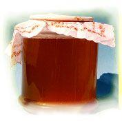 Kombucha Tee Rezept