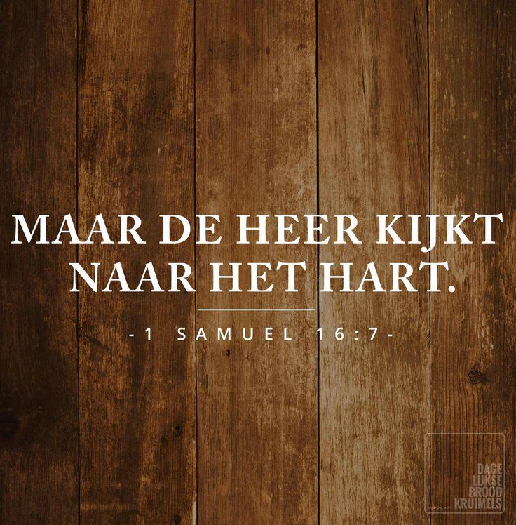 Maar de Heer kijkt naar het hart.1 Samuël16:7 #liefde