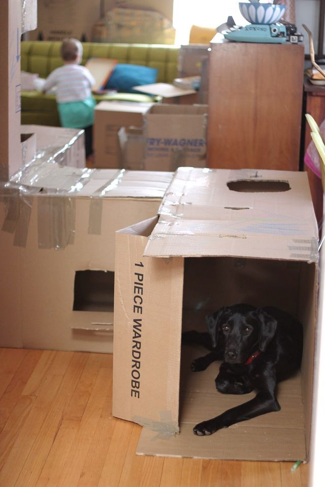 Indoor cardboard box fort/maze = fun and a bit of distraction for kids if you need to get some projects done around the house.