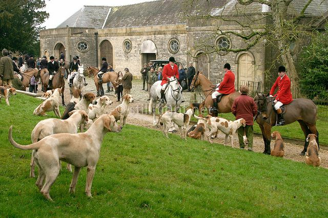 Fox hunt hounds and masters