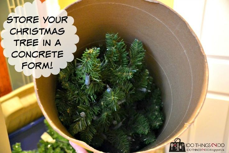 How to store your Christmas tree in a concrete form from hardware store