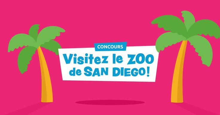 Courez la chance de visiter le zoo de San Diego ! Recommandez vos amis pour obtenir plus de chance de gagner !