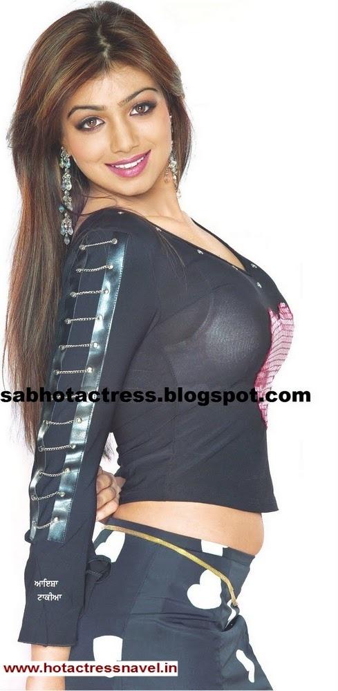 www.hotactressnavel.in - Navel, Cleavage, Thighs, Legs, Sari, Saree, India, Indian, Desi, Hot, Sexy, Belly Button, Telugu, Tamil, Malayalam, Hindi, Kannada, Movies, Actress, Bollywood, Tollywood, Hip, Waist, Ayesha Takia Navel Sari