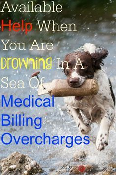 Available help when you are drowning in a sea of medical billing overcharges #chronicillness #fibromyalgia http://alifewellred.com/need-advocate-health-care-billing-needs-try-remedy/