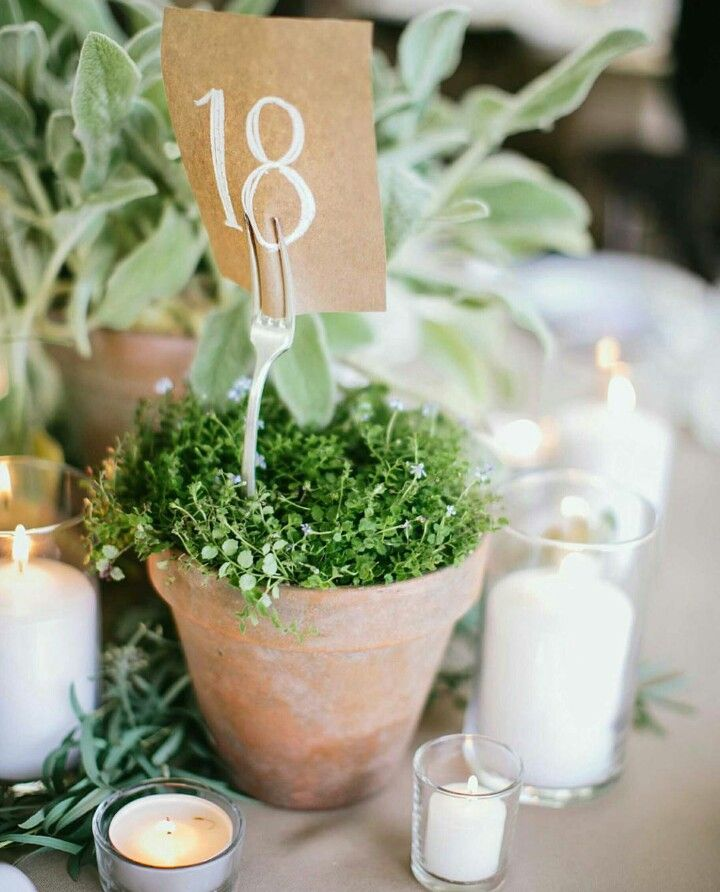 potted table numbers centerpiece ideastable numbersreception
