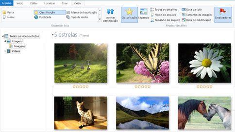Captura de tela de Galeria de Fotos do Windows