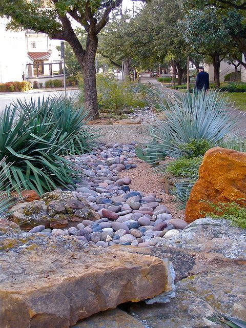 Xeriscape idea for partial dry river bed in front yard.