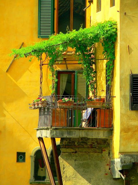 Firenze...Art Nouveau, Yellow Wall, Old Bridge, Florence Italy, Balconies, Tuscany Italy, Travel, Firenze Italy, Dreams Destinations
