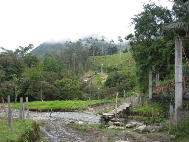 Mountains and forests in Colombia #travel #colombia #hiking