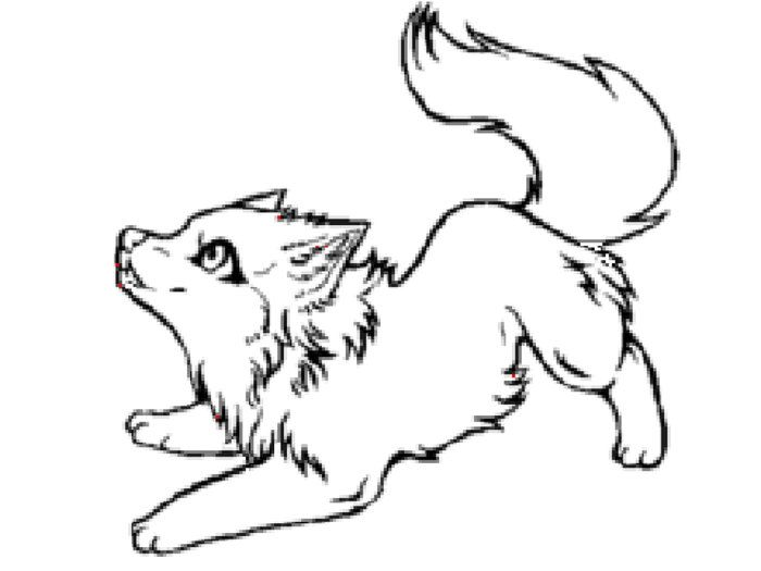 Cute Arctic Wolf Coloring Pages Wolf Sketch Cute Wolf Drawings