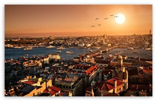 """""""İstanbul ey İstanbul ey.Acılar kraliçesi. Umudun ve direncin yorgun anası. Ve ey çıldırmak üzere olmanın. Çamurlu ikonası. Tırnaklarım kopuyor. Görmüyor musun."""" #YusufHayaloğlu"""