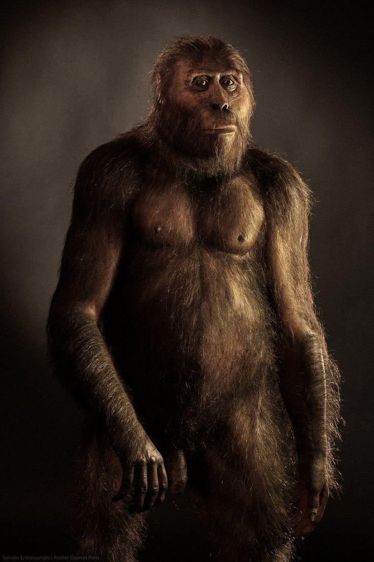 Australopithecus afarensis male by Élisabeth Daynès