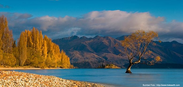 Wanaka Lake, #NewZealand. Get the travel package to New Zealand here