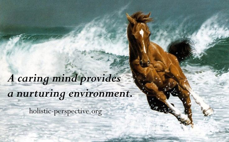 Theory of Holistic Perspective | Nurturing environment