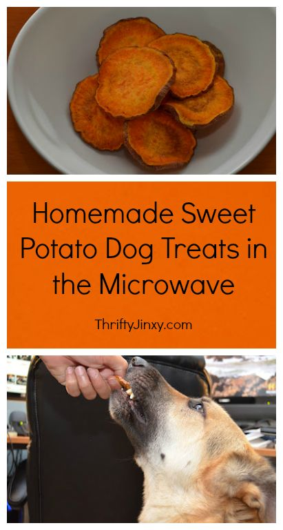 Easy Homemade Sweet Potato Dog Treats in the Microwave - Thrifty Jinxy