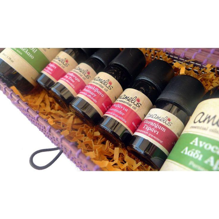 Starter Aromatherapy Kit & Gift Set