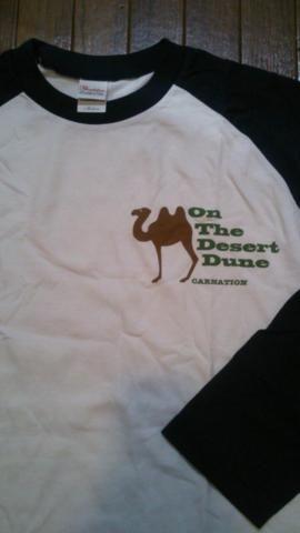 あんまり持ってないし既出だけど。最重要「砂丘にて」Tシャツ。唯一同じの2枚買った。これ着て行った地元鳥取凱旋公演楽しかったな…(つД`)【Velvet Velvet Againツアー「On The Desert Dune(砂丘にて)」Tシャツ(2010年)】