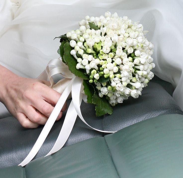 Elegant Wedding Bouquet all made of white Bouvardia flowers.