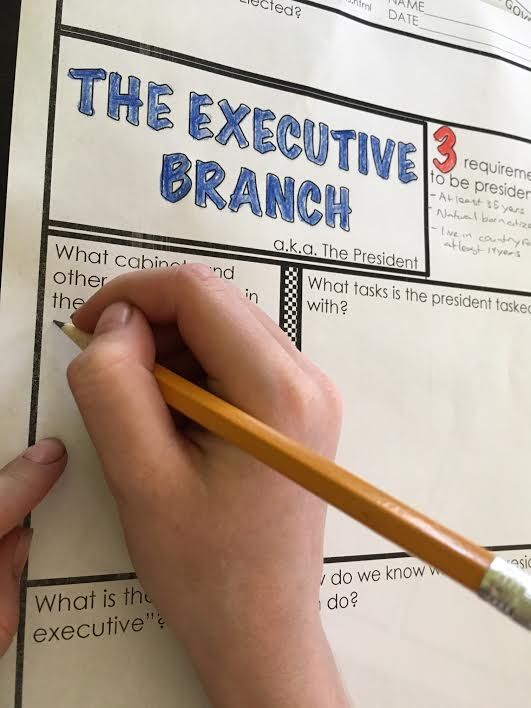 I start our notes on the executive branch with a scavenger hunt of readings and continue with 4 analysis activities.  I am amazed at my students' passion for the role our government should have.