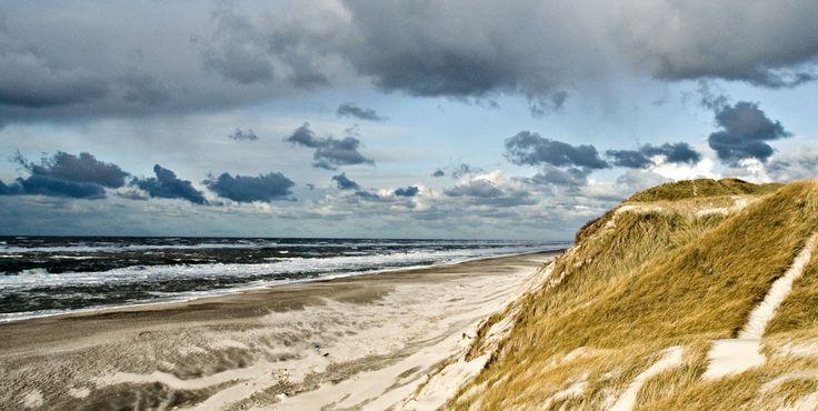 Hvide Sande: Oase zwischen Meer und Fjord   VisitDenmark