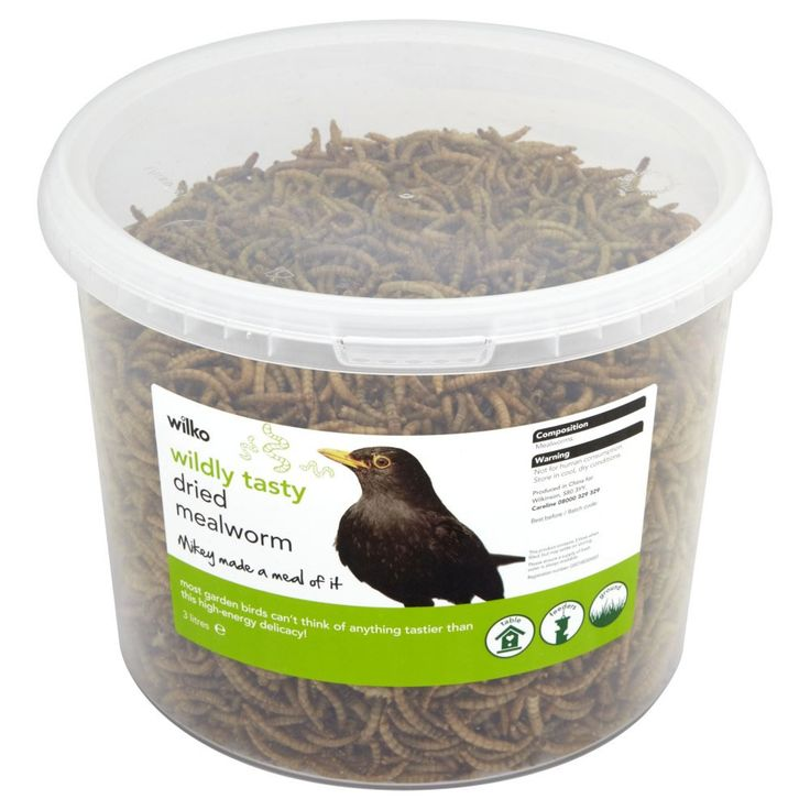 Wilko Wildly Tasty Dried Mealworm 3L | Wild Bird Food,I always mix these in the seed too for Robins etc