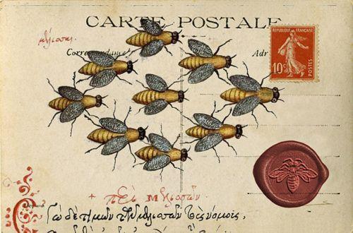 Bee Postcard by IlluminatedPerfume on Flickr.Vintage bee wax seal on vintage postcard. Love!
