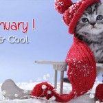 Dear January ! Snowfall Timeline Cover Photo for Facebook