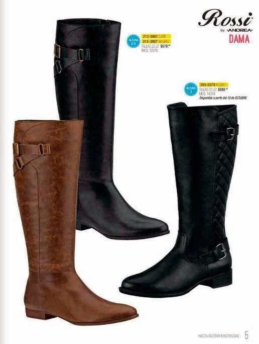 6f5ecc6a181 Catalogo Rossi de Andrea Otoño Invierno 2014-15 | Zapatos | Cute shoes  boots, Shoe boots, Boots