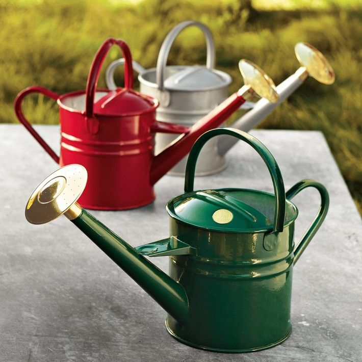 But if you own just one watering can, it should be the versatile 4.5-liter Haw's Traditional Metal Watering Can, available for £39.99 from Garden Gifts Direct.