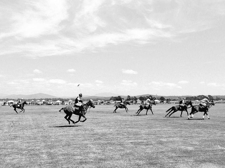 Nice work chaps, amazing day. @glenagilmore @robarch84 @WilloPoloOz @thecreechtas @Barnbougle #polo #Tasmania