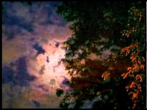 """Floare-albastra"" de Mihai Eminescu (Poetry reading/ Romanian poets) eng..."