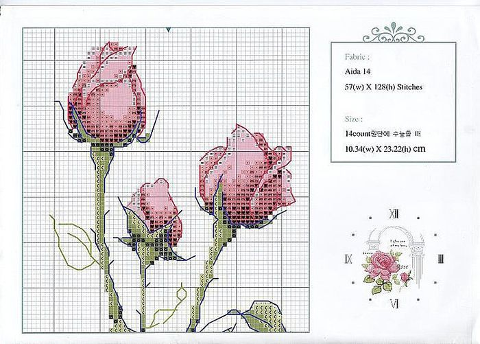 80520402_rozuy_amur_shema1.jpg (700×501)