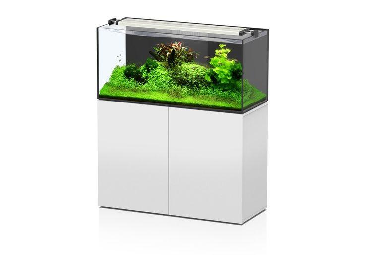 Aquatlantis Aquarium - Aquarien und Zubehör Fertigung