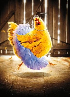"""Birthday Card. Inside reads """"Happy Birthday... to one fabulous chick."""""""
