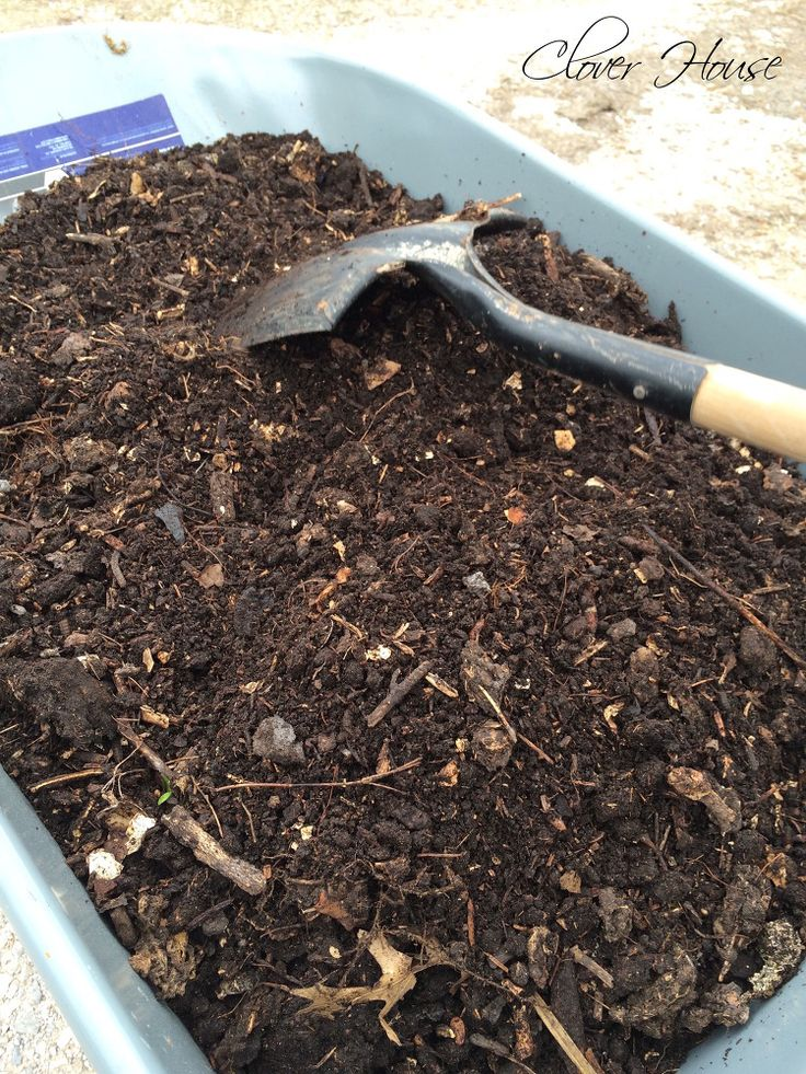 Making Your Own Organic Compost | Hometalk