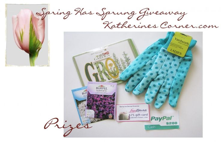 Spring Has Sprung giveaway, enter to win $300 in cash and prizes