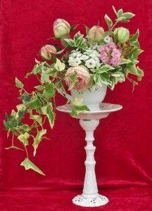 Dans une tasse à café, des roses Pierre de Ronsard, du fusain panaché, des kalanchoés, du lierre.