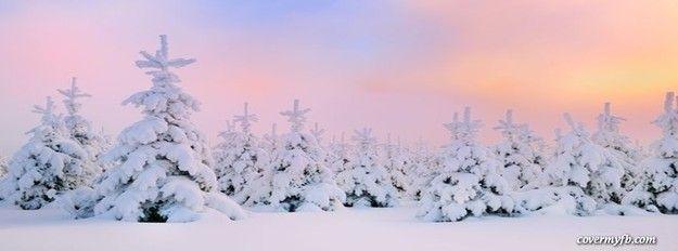 Pretty Winter Facebook Cover