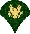 Specialist Rank US Army