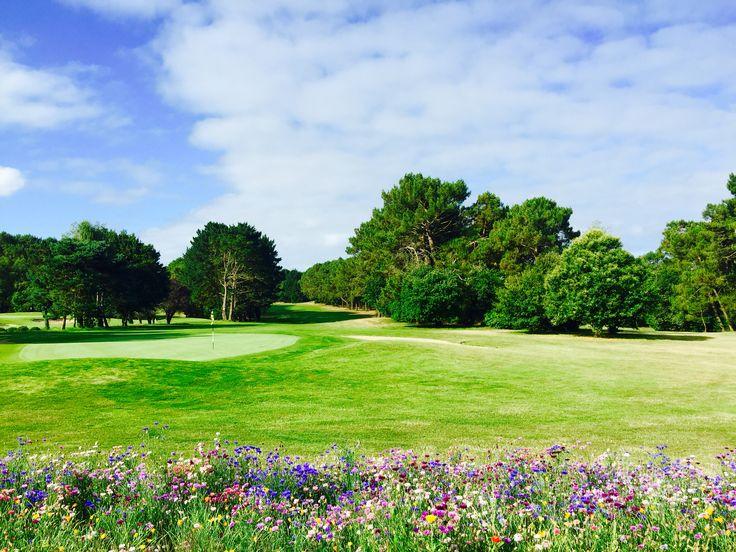 Golf Blue Green Saint Laurent